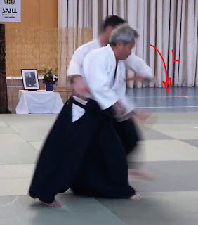 Shihonage ushiroryokatadori