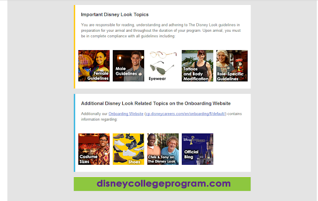 The Disney Look email
