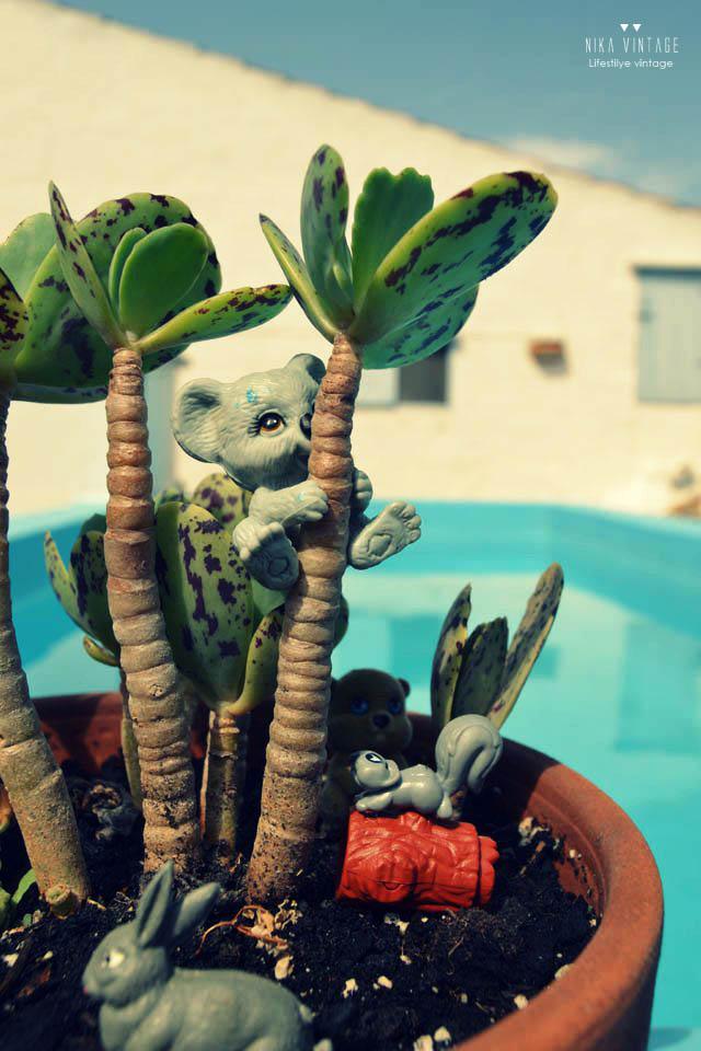 diy, diorama, hazlo tu mismo, animales de plastico, animalitos de goma, maceta, mundo en maceta