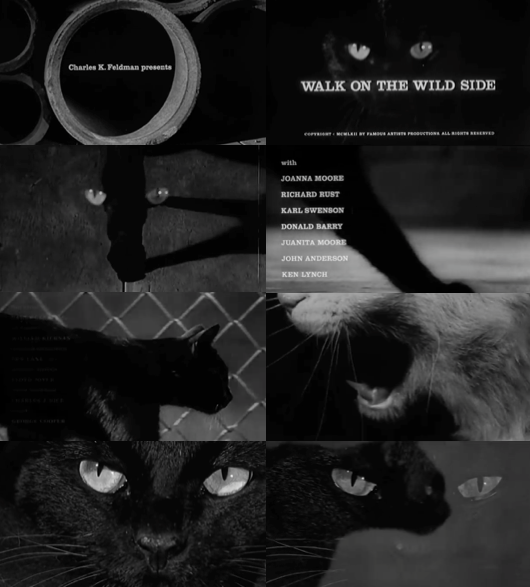 Walk on the Wild Side opening credits by Saul Bass