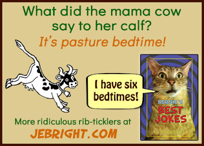 What did the mama cow say to her calf?