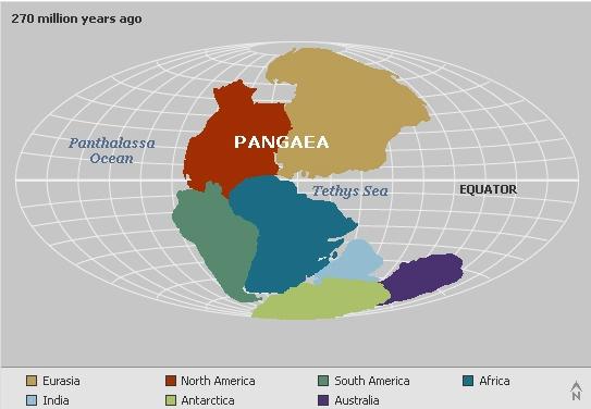 Map before continents world map 4b8b36914c96f25a8f3c1bd1d2819762 continental2bdrift2bpart2b1 gumiabroncs Gallery