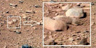 Tikus Dari Di Planet Mars - munsypedia.blogspot.com