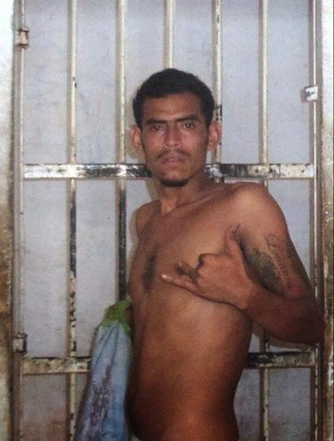 Resultado de imagem para cachorrão é preso em parnaíba