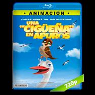 Una cigüeña en apuros (2017) BRRip 720p Audio Dual Latino-Ingles