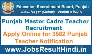 Punjab Master Cadre Teacher Recruitment 2017