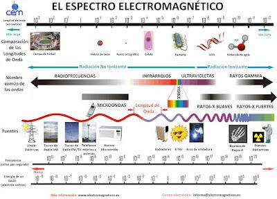 http://recursostic.educacion.es/secundaria/edad/2esobiologia/2quincena4/2q4_centro.htm