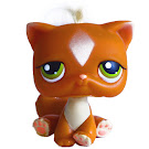 Littlest Pet Shop 3-pack Scenery Cat Shorthair (#226) Pet