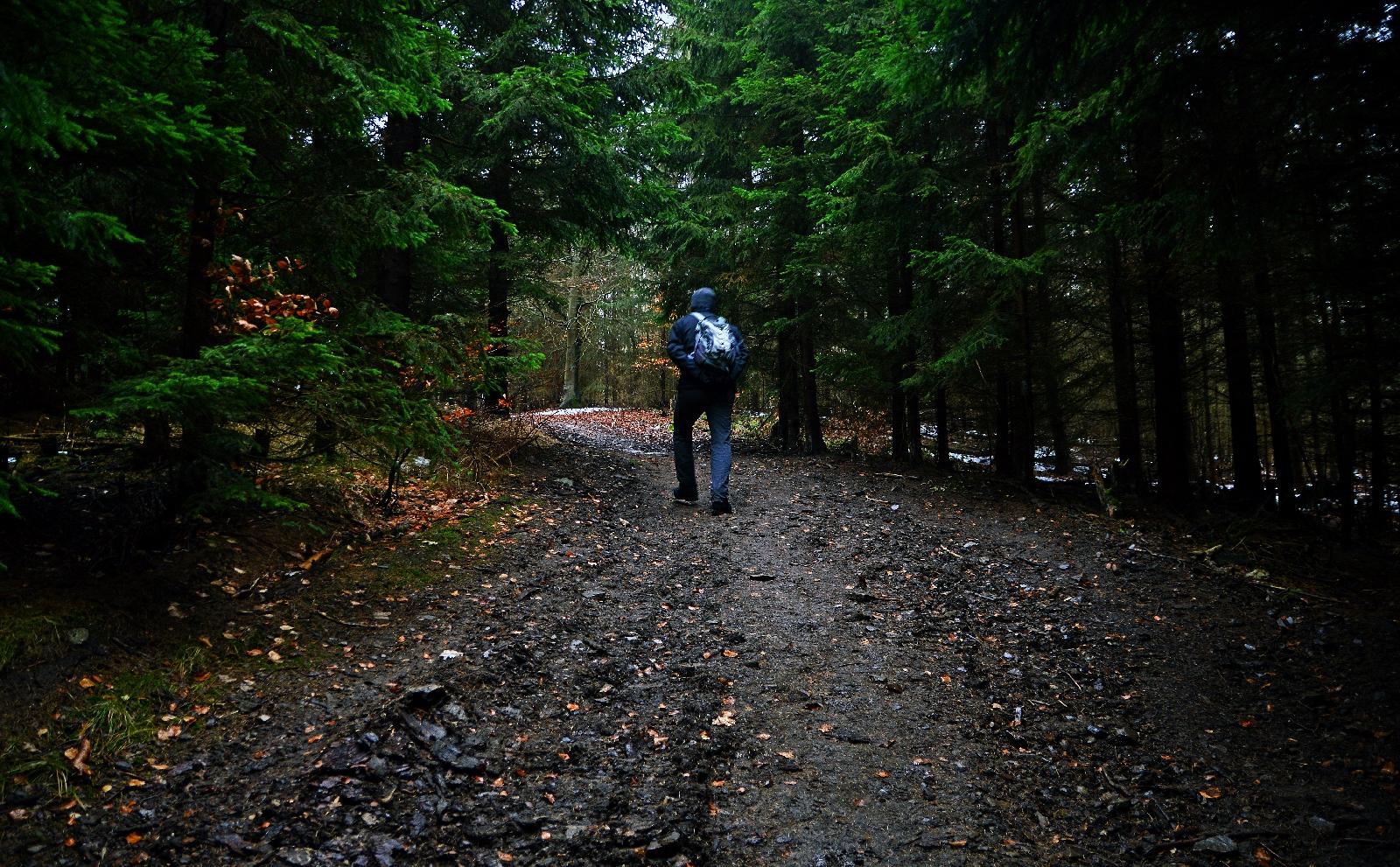 Góry Bardzkie - Szlak na Kłodzką Górę