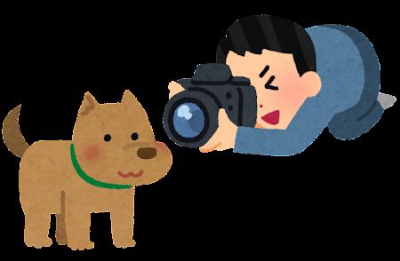 犬の写真を撮る人のイラスト