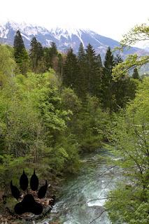 gorges-vingtar-slovenie