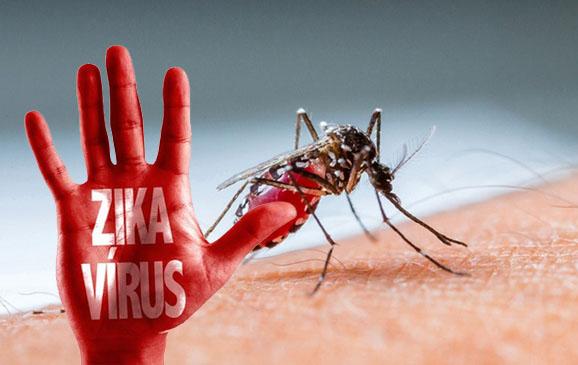Pemerintah harus sosialisasikan travel warning untuk cegah virus zika masuk