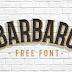 Barbaro Font Family (FONTS)