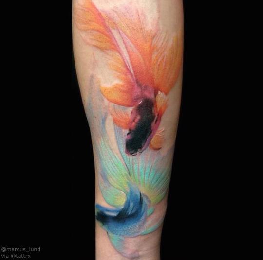 Beautiful Koi Fish Tattoos on Hand