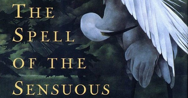 Book Review: The Spell of the Sensuous by David Abram