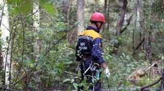 (ФОТО) Поиск 4 летнего ребенка пропавшего в п. Рефтинском