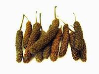 Cabe jawa ialah salah satu tumbuhan jenis rempah asli Indonesia Cabe jawa (Piper retrofractum Vahl)