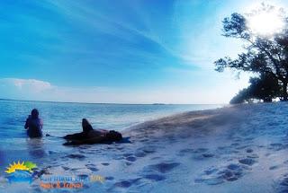 wisatawan di pulau cemara kecil karimunjawa