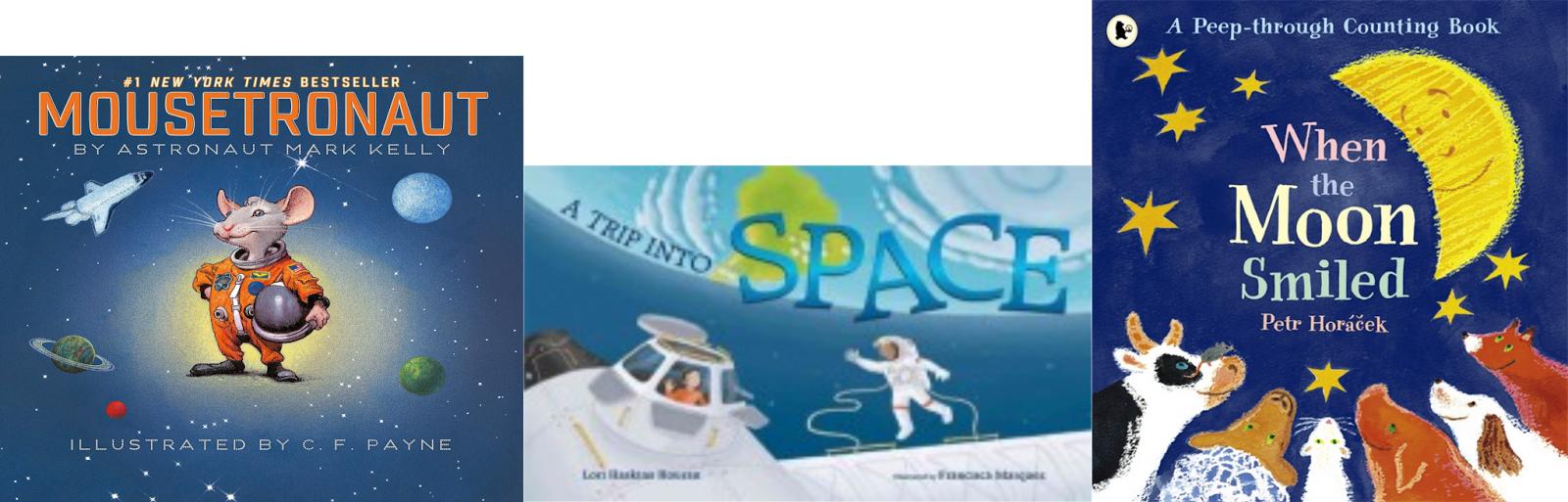Wild About Reading: Family Storytime: Out in Space