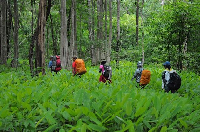 For your feet only: Vietnam's most splendid trekking route 4