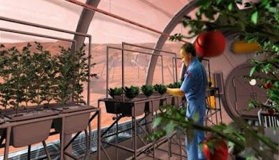 Manusia Yang Tinggal Di Mars Bisa Menjadi Spesies Baru