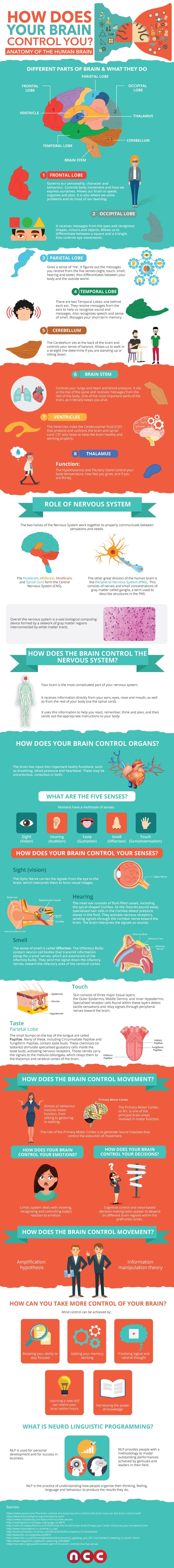 How Does Your Brain Control You?