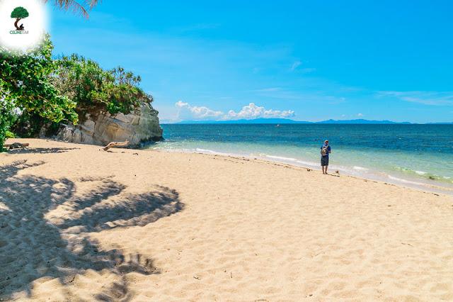 pinamuntugan island albay