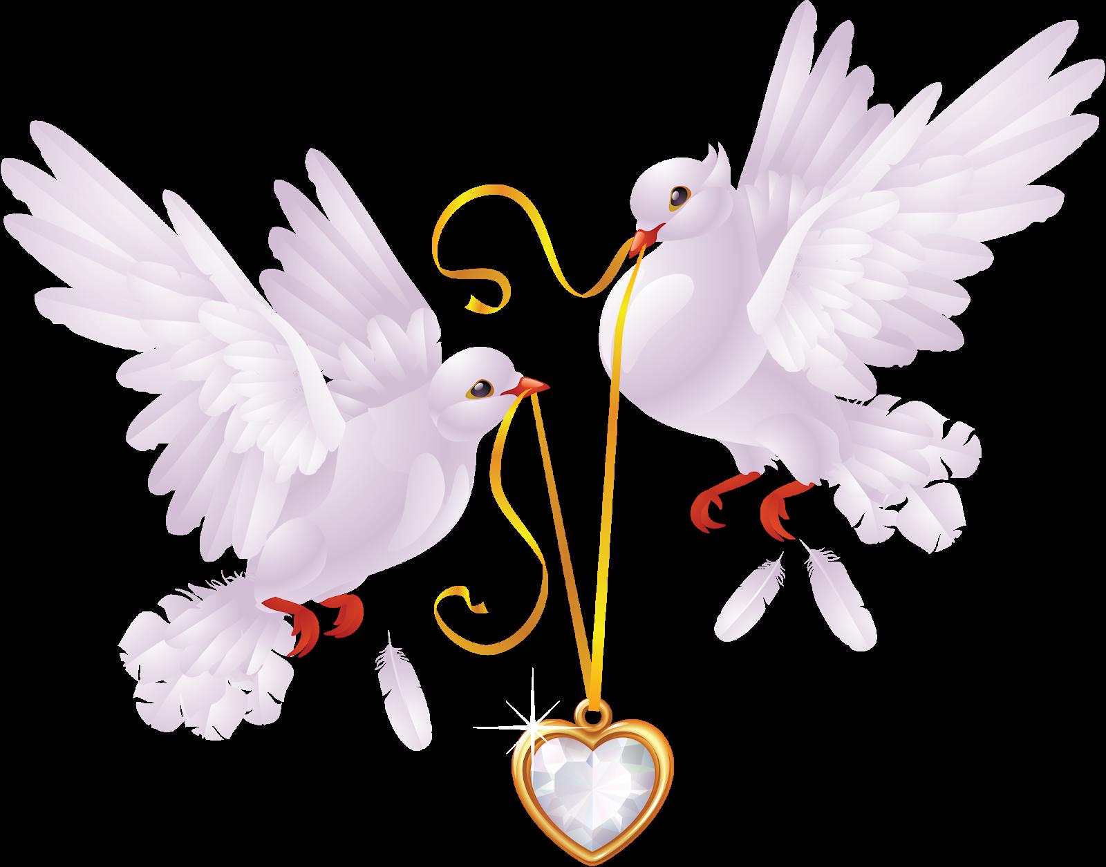 свадебные голуби анимационные картинки майнкрафт вполне