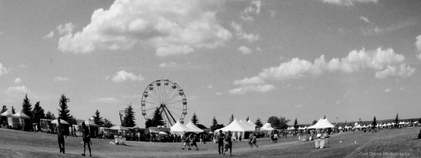 Whatalife Super Ball Ix A Three Day Festival