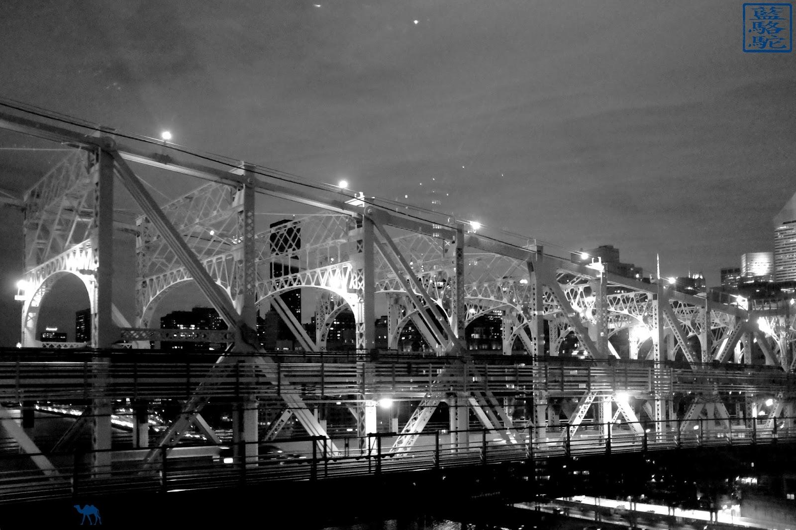 Le Chameau Bleu - QueensBoro bridge depuis le téléphérique