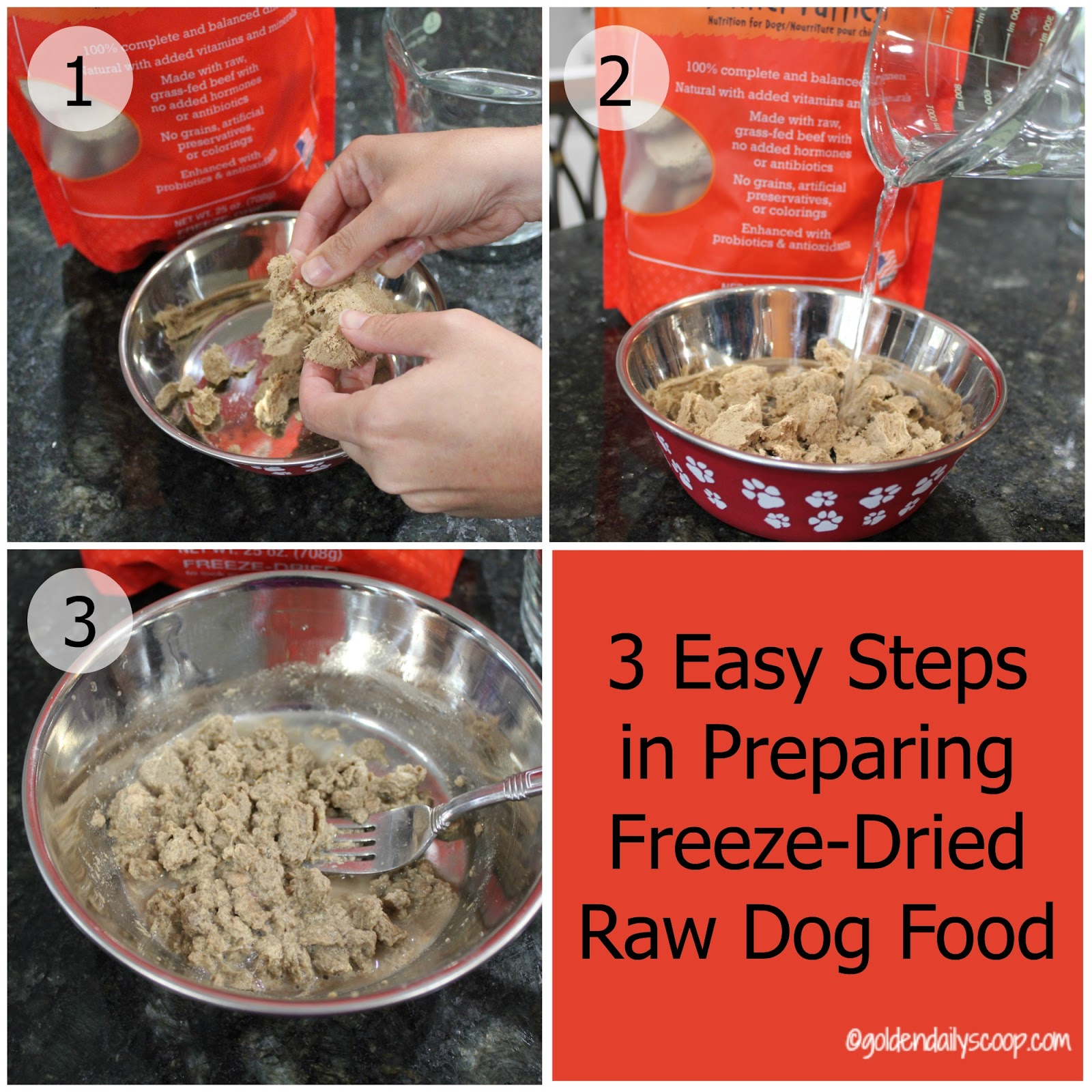 Golden Daily Scoop 3 Easy Steps In Preparing Freeze Dried