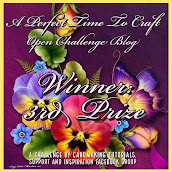 3rd Prize Winner Badge