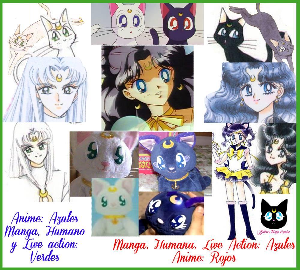 Sailor Moon Spain Sabias Que Los Ojos De Luna Y Artemis