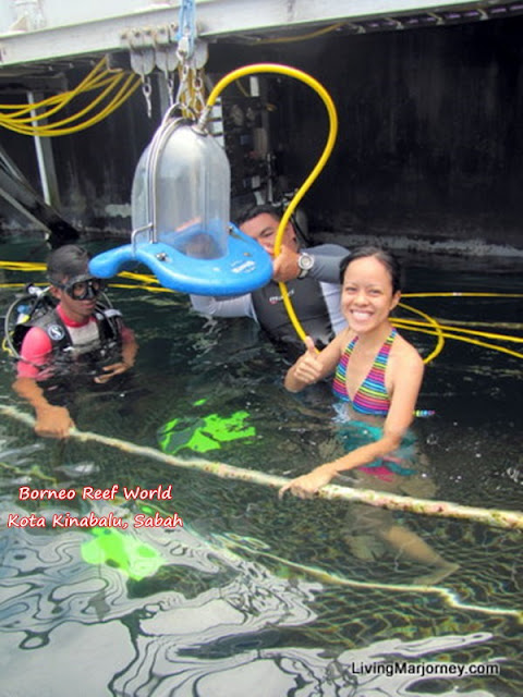 Borneo Reef World