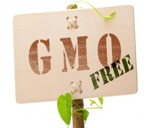 Los Angeles City Council to vote on being GMO-free…