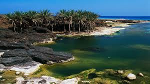 جزيرة سقطرى