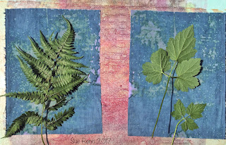 Wet cyanotype, Sue Reno, Image 9