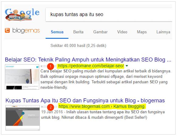 Cara Menentukan WWW dan Non WWW Blog di SERP Google