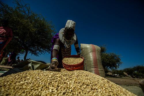 Woman farmer in Tanzania