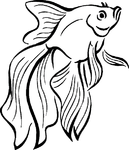Finding Nemo Coloring Pages For Elegant Nemo Coloring Pages