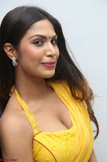 Nishigandha in Yellow backless Strapless Choli and Half Saree Spicy Pics 081.JPG