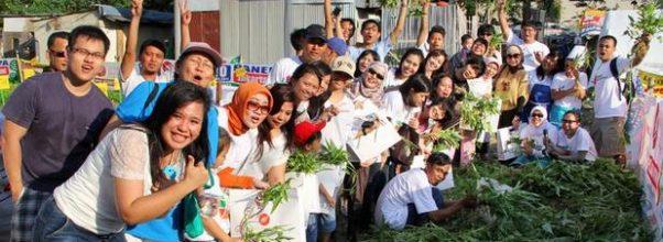 Penerapan pertanian perkotaan atau urban farming di Jakarta