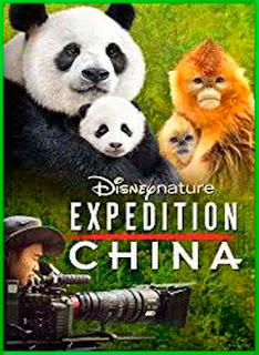Expedition China (2017) | DVDRip Latino HD GDrive 1 Link