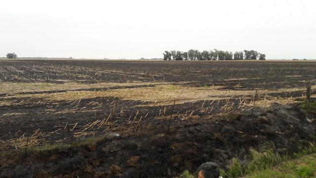 Incendio de rastrojo en zona rural