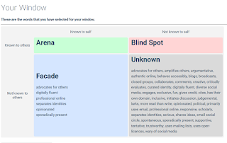 Screen capture Johari Window