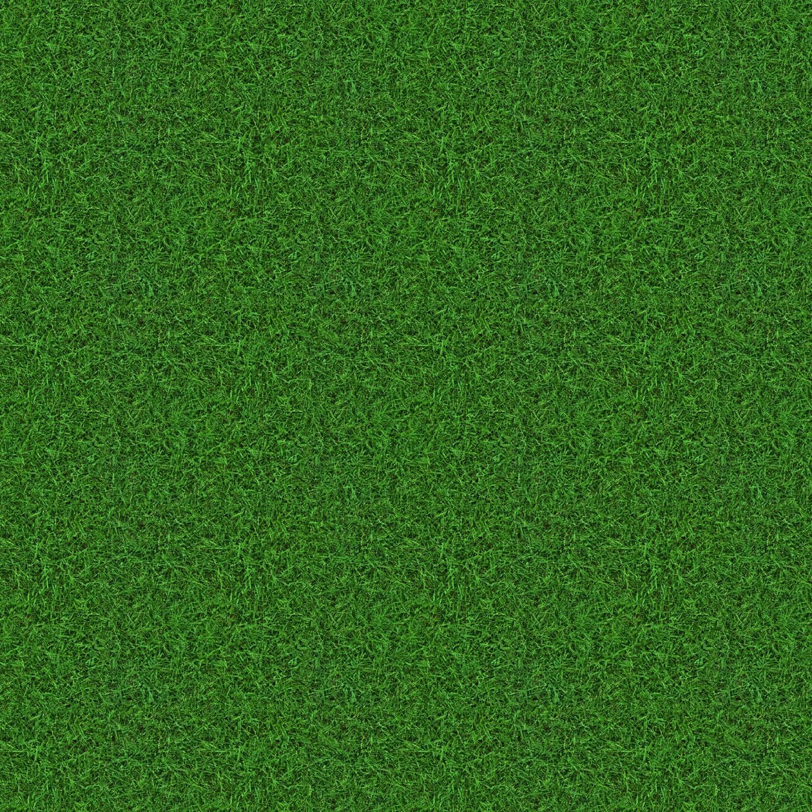 High Resolution Seamless Textures Grass Choppy Green