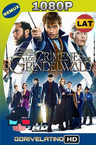 Animales Fantásticos: Los Crímenes de Grindelwald (2018) BDRemux 1080p Latino-Ingles MKV
