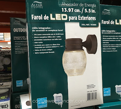 Altair Lighting AL-2152 Outdoor LED Lantern - Light up your way