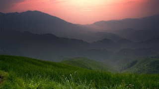Nature Wallpapers Ultra HD: Refresh mind with Nature