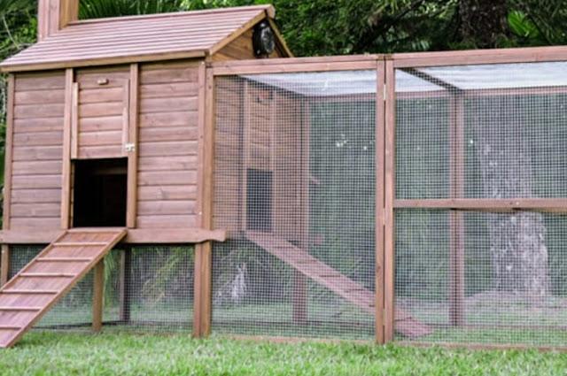 Projek rumah kucing